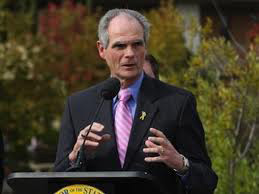 The Mayor of San Jose, California Chuck Reed's mismanagement and neglect of the San Jose pension systems has cost taxpayers and system members well over $94 million dollars the past three years.